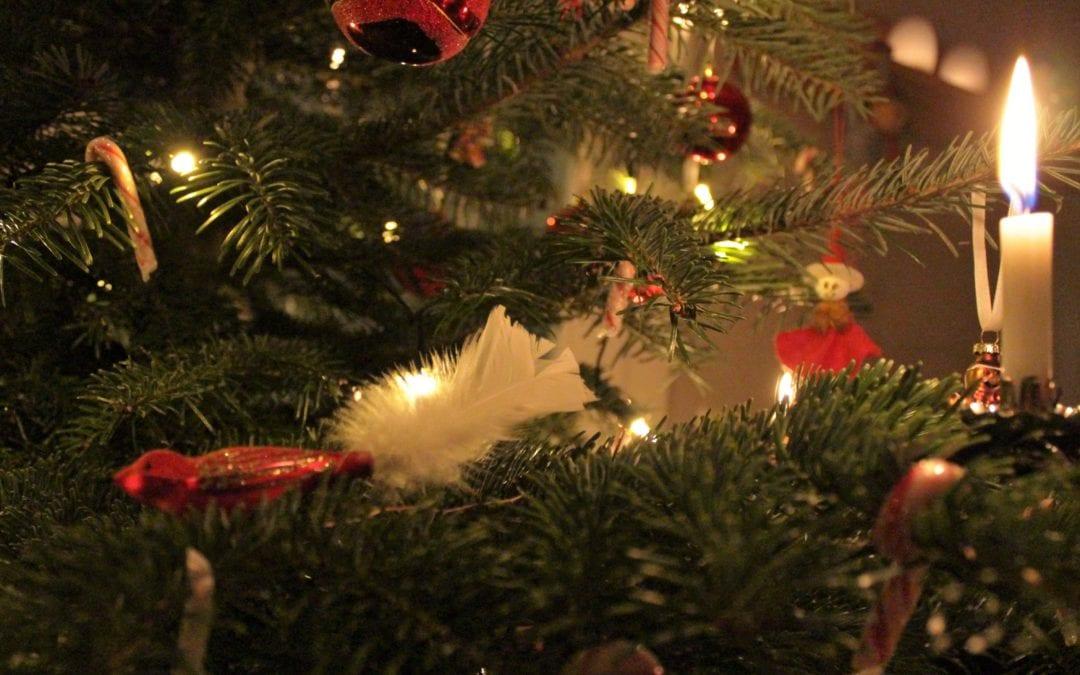 Besinnliche Weihnachten und ein glückliches neues Jahr 2021!